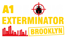 Reliable Bed Bug Exterminator in Brooklyn